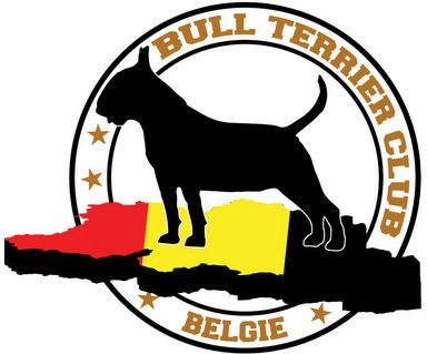 CETS  Continental Bull Terrier Trophy Show – BELGIUM – January 2017