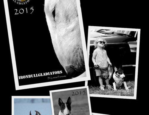 CALENDARIO 2015 IRONBULLGLADIATORS