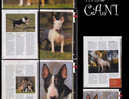 """RIVISTA """"CANI"""" MAGGIO 2009"""