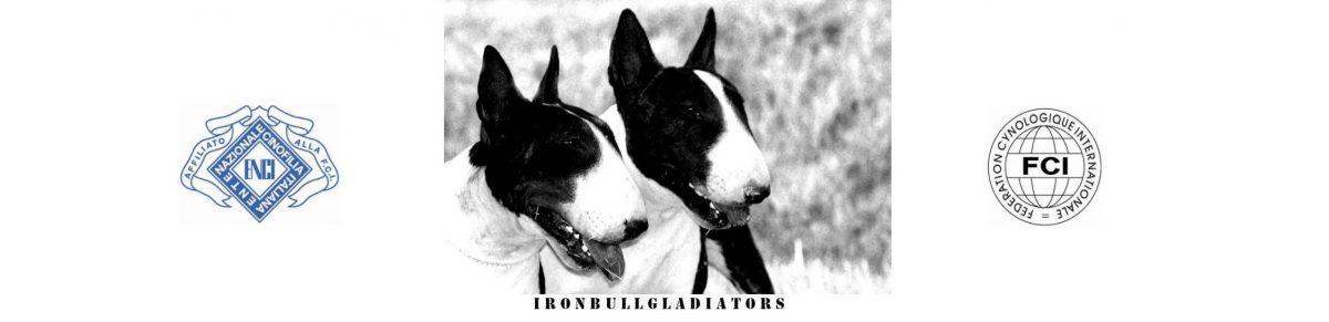 Ironbullgladiators